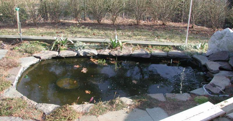 the pond at chateau gladstone including live pondcam